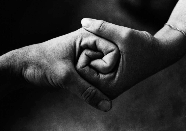 Proverbio arabo sull'amicizia