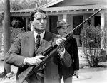 Il Buio oltre la Siepe – Film 1962
